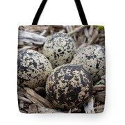 Killdeer Eggs Tote Bag