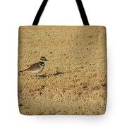 Killdeer In The Grass #3 Tote Bag