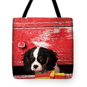 King Charles Cavalier Puppy  Tote Bag