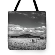 King Homestead_bw-1593 Tote Bag