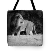 King Of Beasts Black And White Tote Bag