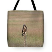 King Of His Domain. Tote Bag