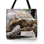 King Of The Galapagos Tote Bag