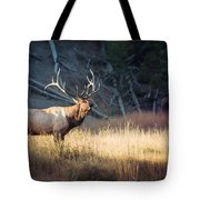 King Of The Madison Tote Bag