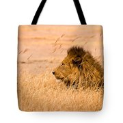 King Of The Pride Tote Bag by Adam Romanowicz