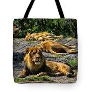 King Of The Pride Tote Bag