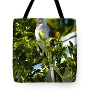 King Of The Song Tote Bag
