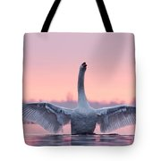 King Of The Water And The Sunset  Tote Bag