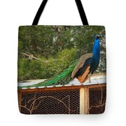 King On His Throne Tote Bag