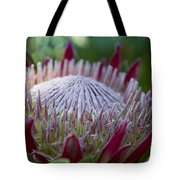 King Protea Island Flowers Jewel Of The Garden Tote Bag