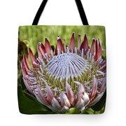 King Protea Tote Bag