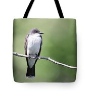 Kingbird Tote Bag
