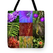 Kingdom Plantae Tote Bag