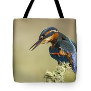 Kingfisher Itch Tote Bag