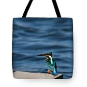 Kingfisher On The Dock Tote Bag