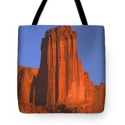 612706-kingfisher Tower  Tote Bag