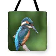 Kingfisher Watching Below Tote Bag