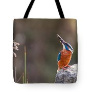 Kingfisher With Fish Tote Bag