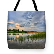 Kings Park Bluffs Tote Bag