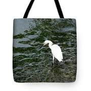 Kingston Jamaica Egret Tote Bag