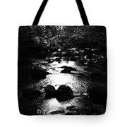 Kintyre Plus Seventeen Tote Bag