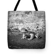 Kiss Me Thrill Me Tote Bag