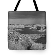 Kissimmee Storm Tote Bag