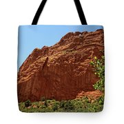 Kissing Camels At The Garden Of The Gods Tote Bag