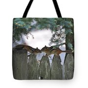 Kissing On A Fence Tote Bag