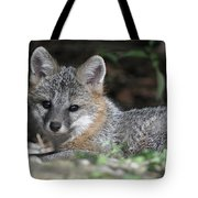 Kit Fox1 Tote Bag