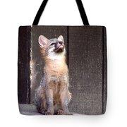 Kit Fox11 Tote Bag
