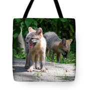 Kit Fox12 Tote Bag