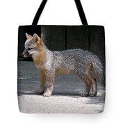 Kit Fox14 Tote Bag