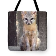 Kit Fox15 Tote Bag