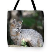 Kit Fox7 Tote Bag