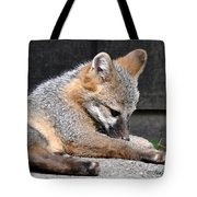 Kit Fox8 Tote Bag