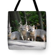Kit Fox9 Tote Bag