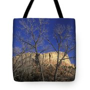 Kitchen Mesa And Bare Cottonwood Trees Tote Bag
