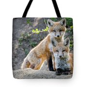 Kits At Rest Tote Bag
