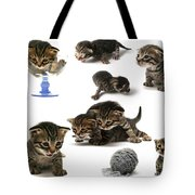 Kitten Collage Tote Bag
