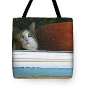 Kitten In The Window 2 Tote Bag
