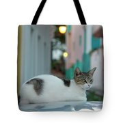 Kitten Reflections Tote Bag