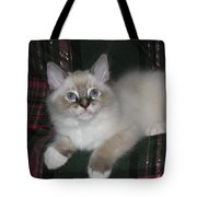 Kitten Silky Snow Lynx With Boots Tote Bag