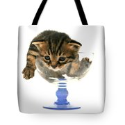 Kitten Sits In A Glass  Tote Bag