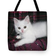 Kitten Snow White On Green And Pink Plaid Tote Bag