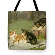 Kittens Playing Tote Bag
