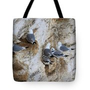 Kittiwakes Tend Their Chicks At Rspb Bempton Cliffs Tote Bag