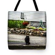Kitty Across The Street  Tote Bag