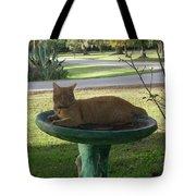Kitty Bird Bath Tote Bag