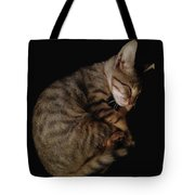 Kitty Cat Curls Up Tote Bag